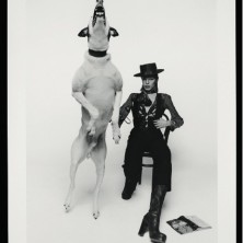 Promotional photograph of David Bowie for Diamond Dogs, 1974printed 2009) Terry O'Neill V&A: e.315-2011