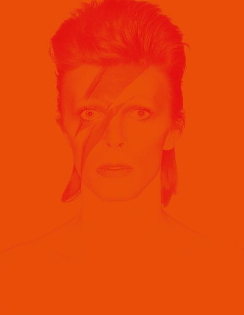David Bowie Is_cover