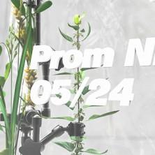 (pn4)banner-web2