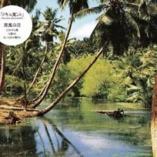 悪魔の沼『ドキュ魔ント-live mix document-』 ロボ宙、東京アンダーグラウンド・クラブ界の幻の怪人KOBA(free form freakout)をフィーチャー。3パートからなる3人のバック・トゥ・バック・スタイルで無限沼にハマっていく2枚組ミックスCD。