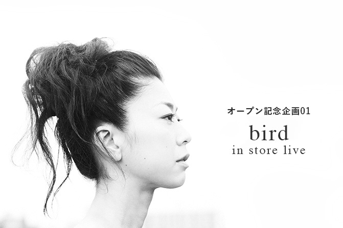 bird_ap_main2