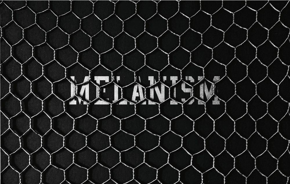 MELANISM front
