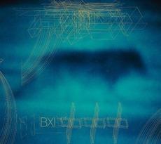 全世界で2,000万枚以上のセールスを記録するバンド、ザ・カルトのシンガーにして、再結成したドアーズのヴォーカルを務めるイアン・アストベリーとの共演作品『BXI』。2010年8月リリース。